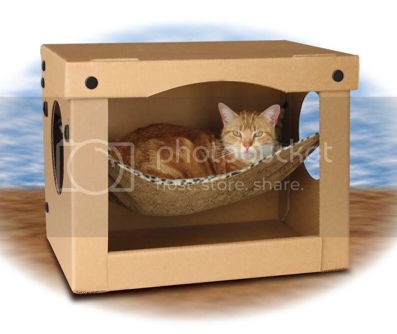 cardboard cat furniture house