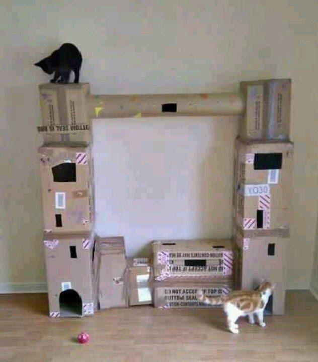 cardboard cat tree ideas