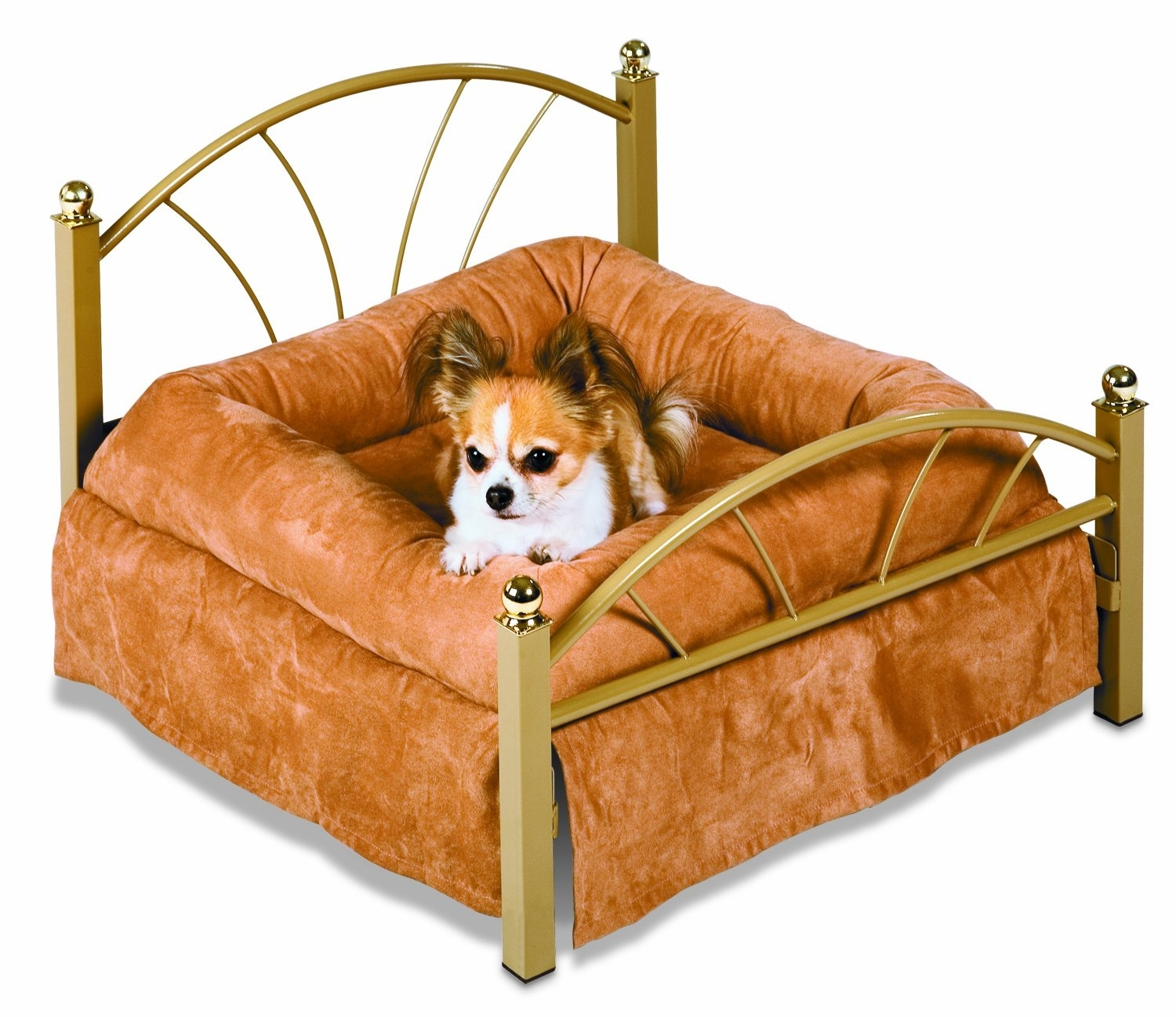 Dog Beds That Look Like Real Beds Ideas On Foter
