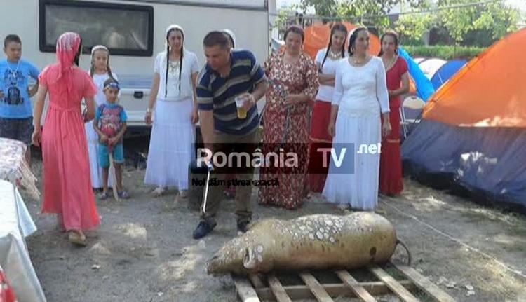 Disznót vágtak a nyaraló romák a tengerparton