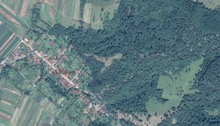Orvvadászok lőttek egy erdészre Arad megyében