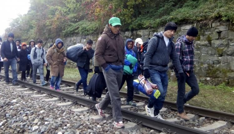 Romániában is nőtt a menedékkérők száma 2017-ben