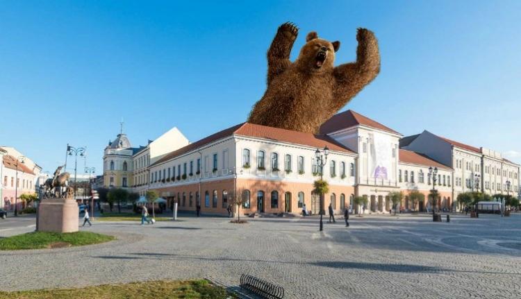 Sakkban tartják a medvék a megyeszékhely lakóit