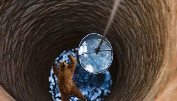 Egy székely gazda belenézett a kútba, és szembenézett vele a medve (FRISSÍTVE)