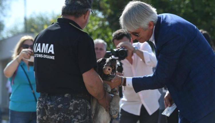 A pénzügyminiszter olyan hálásan simogatott egy pénzcsináló kutyát, hogy az már szerelem