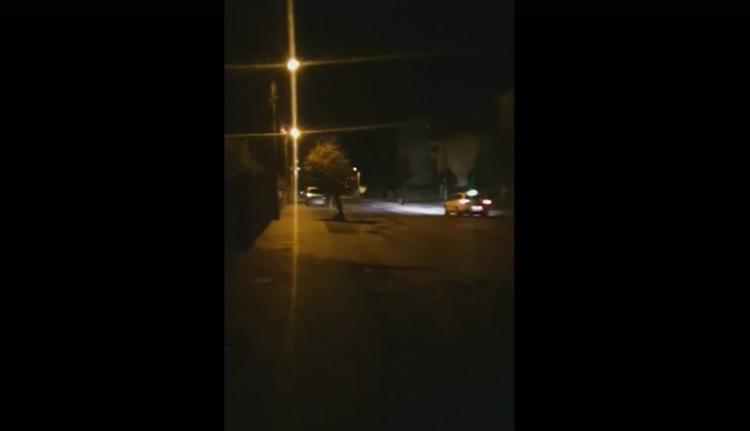 Taxi kergette ki a medvét Fogaras lakóövezetéből (VIDEÓval)