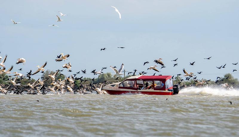 Románia szándékosan teszi tönkre a Duna-deltát, vagy mi van?