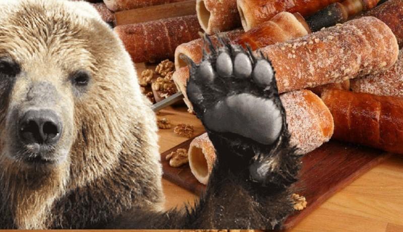Tusványos helyett Tusmancsos: panzióba, boltba törtek be, városházát látogattak a medvék