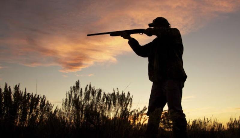 Pár vadászgató politikus olyan vadászati törvényt akar bevezetni, hogy kábé mindent lelőhessenek