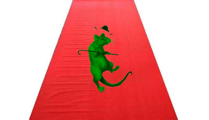 Ilyen nincs: egy patkány sétál a gazdasági minisztérium folyosóján