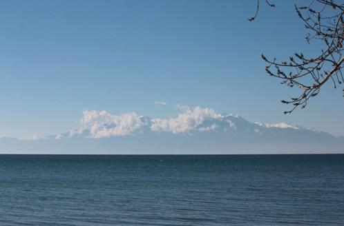 winter sea 20