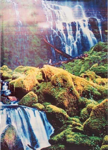 photobook-belge-fomu-foto-agenda-fotoboeken