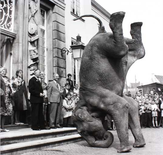 picture-this-museum-zutphen-foto-agenda
