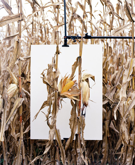 Mathieu-Asselin-Monsanto-fototentoonstelling