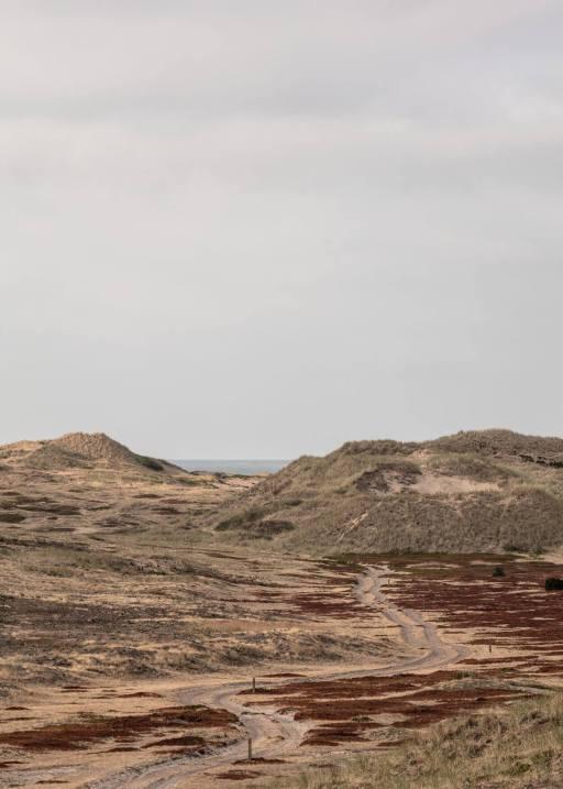 Ørkenen Anholt