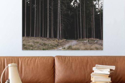 Fotokunst i hjemmet