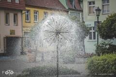 FOTO-Przygoda-w-Połczynie-Zdroju-Wiosna-19-Aleksandra-Malesza-025a