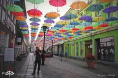 FOTO-Przygoda-w-Połczynie-Zdroju-Wiosna-19-Anna-Szewczyk-081a
