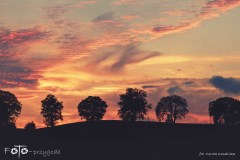 FOTO-Przygoda-w-Połczynie-Zdroju-Wiosna-19-Dorota-Kowalska-094a