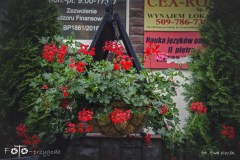 FOTO-Przygoda-w-Połczynie-Zdroju-Wiosna-19-Ewa-Kozik-039a