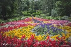 FOTO-Przygoda-w-Połczynie-Zdroju-Wiosna-19-Irena-Adamska-002a