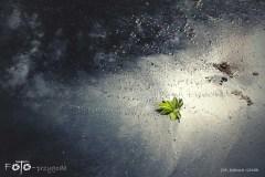 FOTO-Przygoda-w-Połczynie-Zdroju-Wiosna-19-Joanna-Gasek-047a