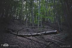 FOTO-Przygoda-w-Połczynie-Zdroju-Wiosna-19-Joanna-Gasek-059a