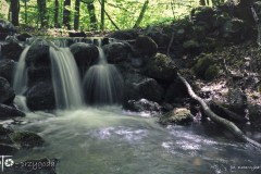 FOTO-Przygoda-w-Połczynie-Zdroju-Wiosna-19-Katarzyna-Bartnik-003a