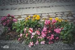 FOTO-Przygoda-w-Połczynie-Zdroju-Wiosna-19-Małgorzata-Klusek-020a