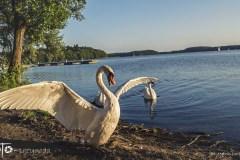 FOTO-Przygoda-w-Połczynie-Zdroju-Wiosna-19-Marcin-Dasiniewicz-099a