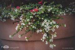 FOTO-Przygoda-w-Połczynie-Zdroju-Wiosna-19-Monika-Milczarek-083a