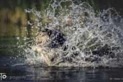 3-FOTO-Przygoda-w-Połczynie-Zdroju-Wiosna-19-1117b