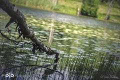 5-FOTO-Przygoda-w-Połczynie-Zdroju-Wiosna-19-1578b