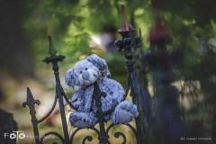 7-FOTO-Przygoda-w-Połczynie-Zdroju-Wiosna-19-2238b