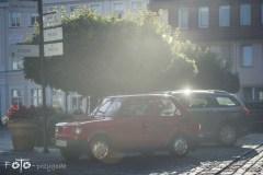 7-FOTO-Przygoda-w-Połczynie-Zdroju-Wiosna-19-2455b