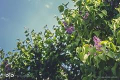 FOTO-Przygoda-w-Świdwinie-Wiosna-19-Agnieszka-Maciołek-002a