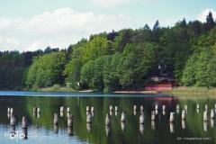FOTO-Przygoda-w-Świdwinie-Wiosna-19-Magdalena-Kaliś-004a