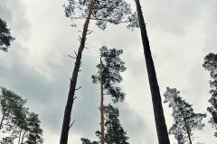FOTO-Przygoda-w-Świdwinie-Wiosna-19-Magdalena-Warcholska-065a