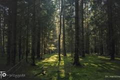 FOTO-Przygoda-w-Świdwinie-Wiosna-19-Marta-Mroczek-023a