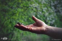 FOTO-Przygoda-w-Świdwinie-Wiosna-19-Milena-Hołojuch-011agotowe