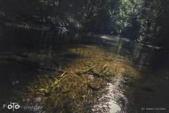 Dziennik-Podróżnika-007-canon-Sierpień-19-042b