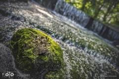 FOTO-Przygoda-w-Połczynie-Zdroju-Wiosna-19-0748b