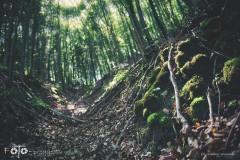 FOTO-Przygoda-w-Połczynie-Zdroju-Wiosna-19-1616-1624bb