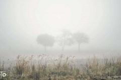 Spacery-Jesień-18-095bgotowe