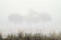 Spacery-Jesień-18-101bgotowe