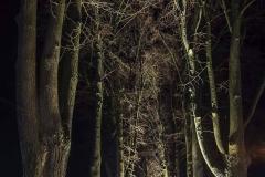 FOTO-Pstryk w plenerze - Goleniów Nocą [Luty 19] 040b