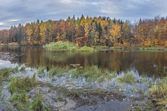 Plener w Podlipcach - Reportaż [Listopad 18] 017-025a