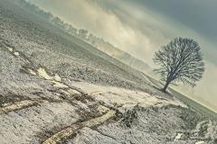 Przyroda - Krajobraz 073
