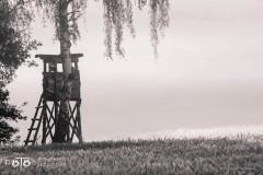 Czerwiec-Lipiec-2017-14_wm