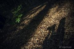 Plener w Ińsku [Wrzesień 18] 160bgotowe